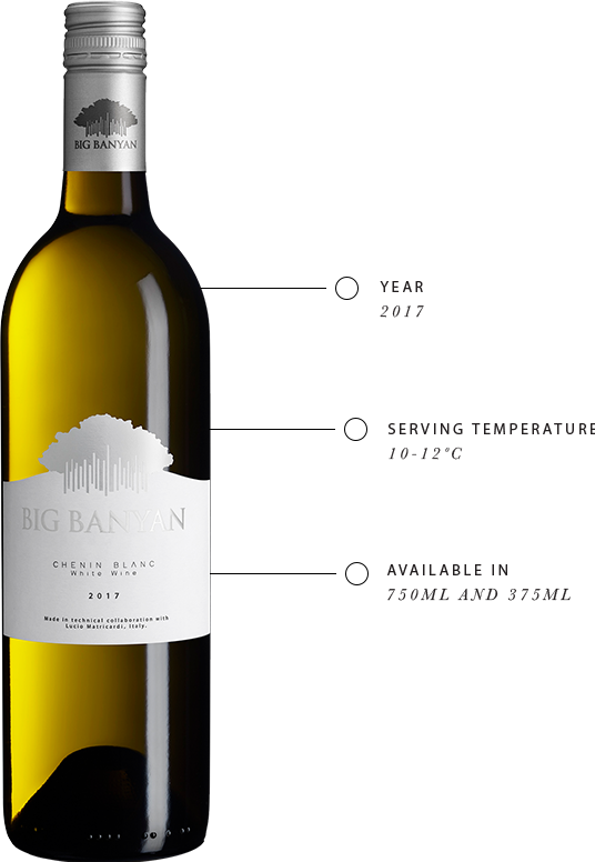 Know more about Big Banyan Chenin Blanc White Wine taste like