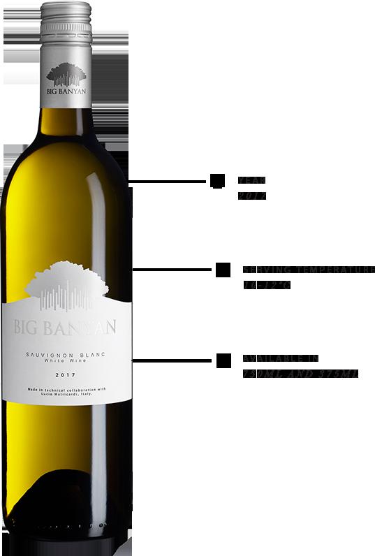 Know more about Big Banyan Sauvignon Blanc White Wine