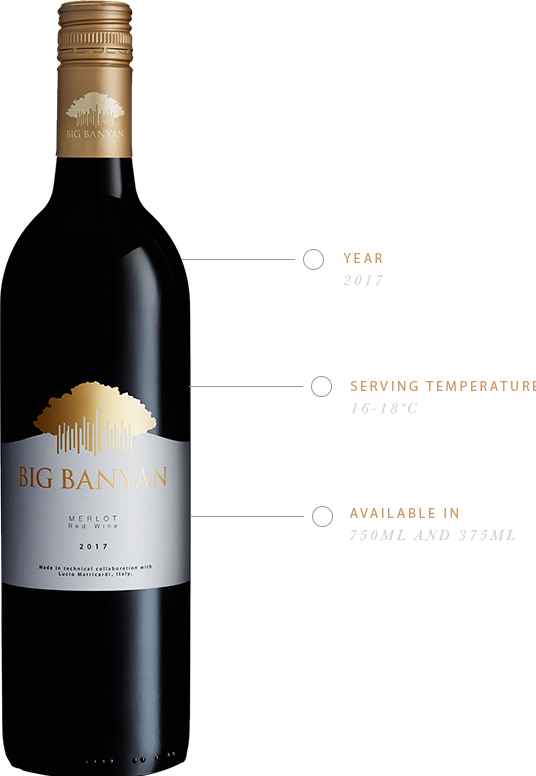 Big Banyan Merlot